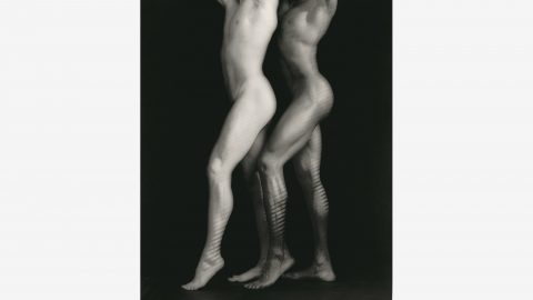 Mapplethorpe - Look at the Pictures - 2016