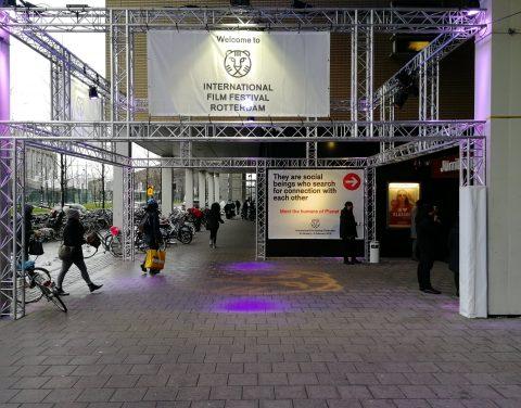 Rotterdam Filmfest