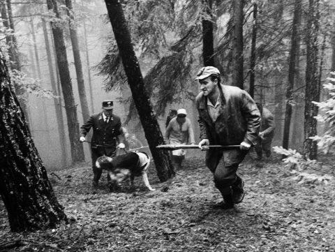 Jagdszenen aus Niederbayern - 1969