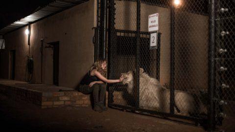 Mia und der weiße Löwe - 2018
