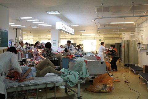 Pandemie - 2013