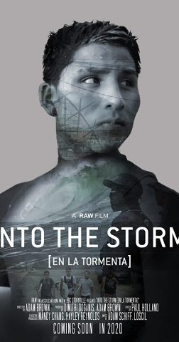 Into the Storm - 2020 poster