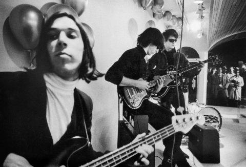 The Velvet Underground - 2021